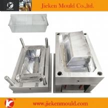 refigerator mould 01