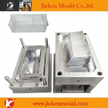 refigerator mould 01